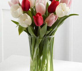 Special Valentine's Day Gifts for Your LOVE